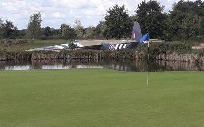 Vreemde vogel op de golfbaan